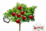 Adquirir la manzana virtual, una manera de colaborar con la campaña 'Una manzana por la vida'